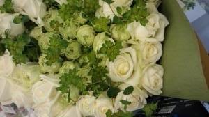 お誕生日 白バラ5…